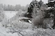 <p>Biotop im Winter</p>